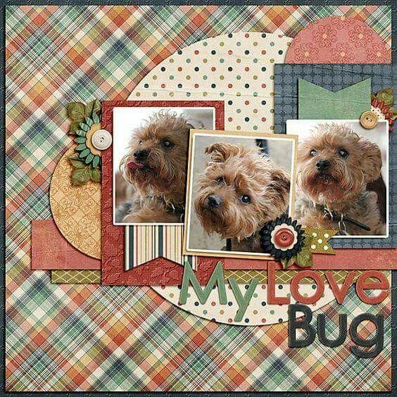 Single page ~ three photos; circles; scraps; layers pet; dogs