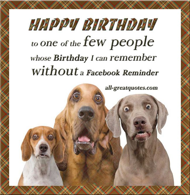 The 176 best greetingsgoodwishesthx images on pinterest funny free funny birthday cards happy birthday to one of the few people whose birthday m4hsunfo
