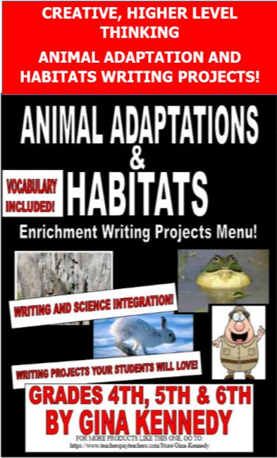 Vocabulary for opinion essays writing pdf
