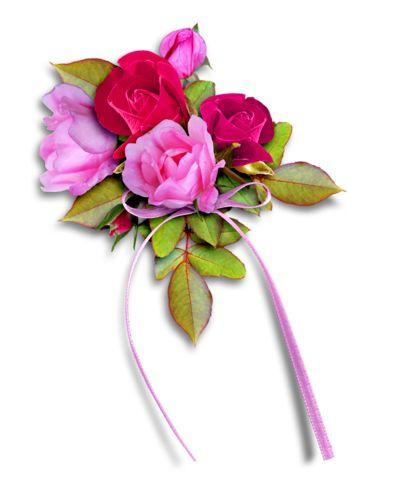 Fialové růže, červené růže, barevné růže, růžová růže, žluté růže, růže se svíčkami, PNG růží ve tvaru srdce žlutých růží, žlutých růží, růže ve vodě - eva6 Blog - J-néErzsike -Csiza přítelkyně, Irene A-Antalffyné A-Csorbáné Ildikó, A-Gizike můj přítel, A-Ildykó můj přítel, A-Kata přítelkyně, A-Klárika můj přítel, A-Klementinától I, A-Kozma Anna Lidia, A-Margitka můj přítel, A-Maroko můj přítel, A-Mirjam můj přítel, A-Little Red Riding můj přítel, A-Suzymamától, Adelaide Hiebel obrazy, Alan…