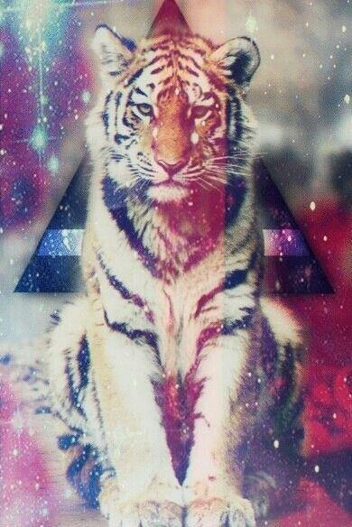 #tiger #galaxy #amazing #beautiful #trippy #colorful # ...