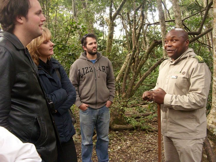 July 2012: The TravelGround Content Team visited Monkeyland in The Crags, Plettenberg Bay. We enjoyed a guided walk through the forest and met all sorts of primates, from ringtailed lemurs, to the rare Spectacled Langur monkey!