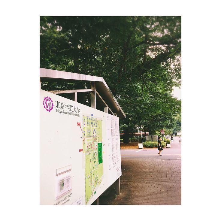 最後の母校�� . ひさしぶりに 大学院の研究室に行ってきました! . 緑が生い茂っていた���� . お仕事で考えることは沢山あるけど いざという時に話を聞いてもらえる場所があることは 幸せ���� . 週が明けたらまたがんばりましょう♡♡ . #東京学芸大学 #大学院 #university #tokyo #japan #study #大学 #論文 #lifestyle #student #phycology #東京 #修士 #モデル #専門職 #研究室 #サトルジャパン #satorujapan #青山通り #ナチュモ #広告モデル #instagram #instagood http://butimag.com/ipost/1554766579529912399/?code=BWTo_dxh5BP