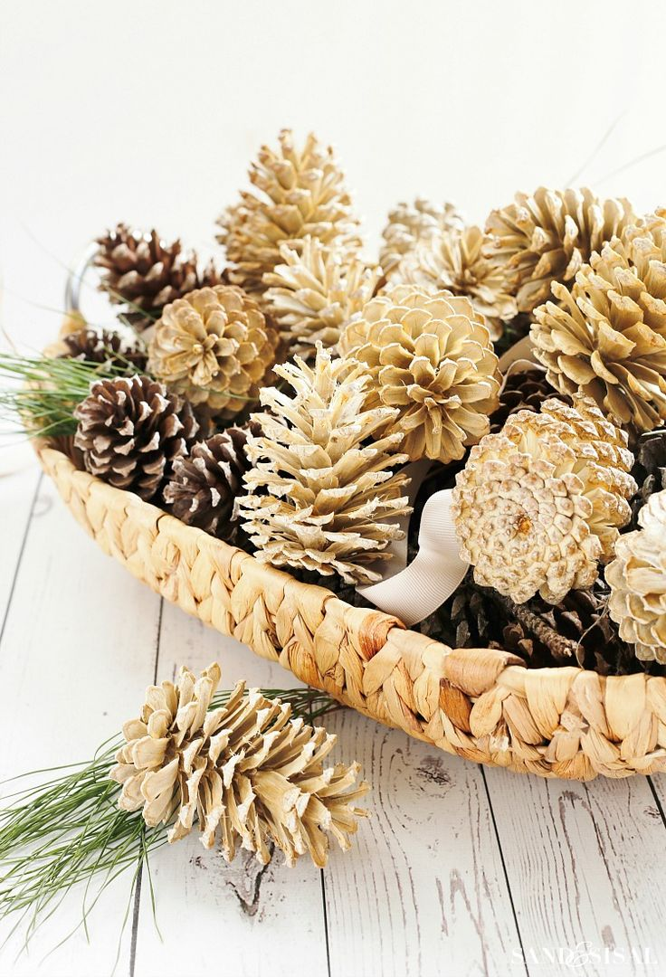 how-to-bleach-pinecones