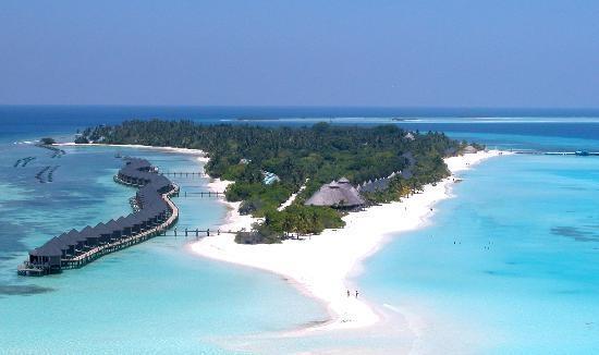 Kuredu Island Resort & Spa: Kuredu Maldives. WILL GO HERE. It will happen.