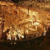 Javoříčské jeskyně, které vytvořil potok Špraněk, dnes nabízí krásnou krápnikovou výzdobu a záclonky.