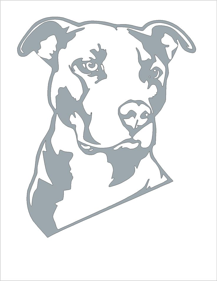 All sizes | Pitbull pumpkin carving stencil | Flickr - Photo Sharing!