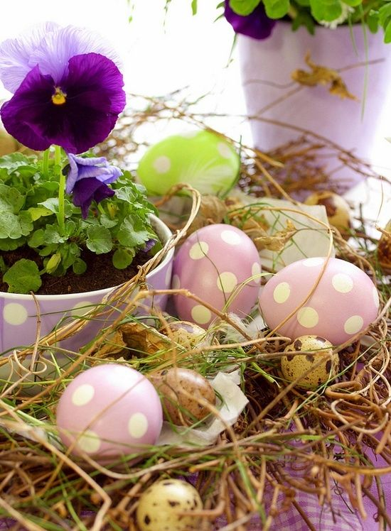 Have fun painting the eggs with your children or grand-kids. Love this table arrangement. The pansies can go into the garden after they have decorated your table top for Easter.