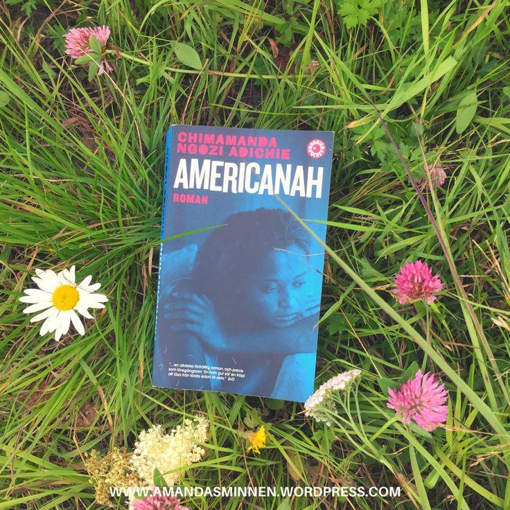 En bok som intresserar, engagerar och uppmärksammar, med fokuset på rasism. Sammanfattning av handlingen (inga spoilers): Ifemelu och Obinze är ett ungt par från Nigeria som drömmer om …