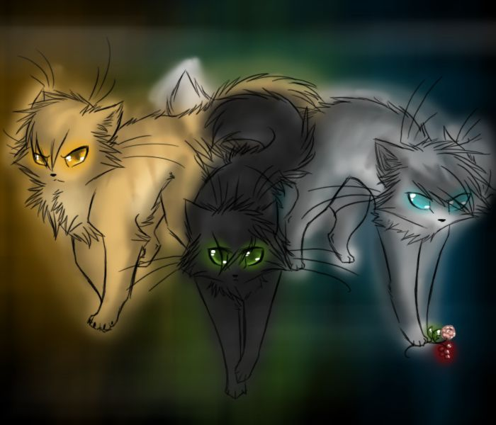 Warrior Cats Game: 17 Best Images About Warriors On Pinterest
