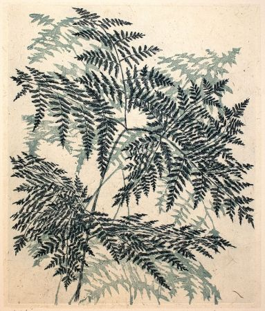 Inari Krohn, etching