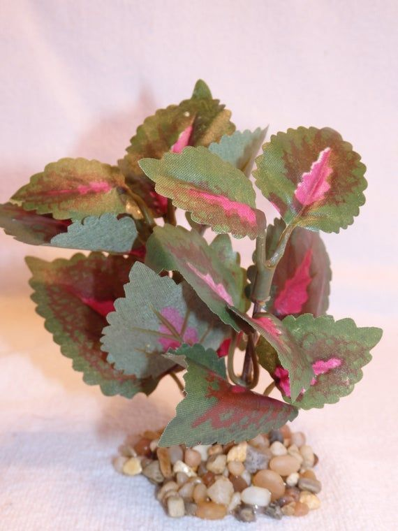 "Artificial Silk Aquarium PLANT w// STONE BASE 4/"" SMALL Pink//Green COLEUS Bush"