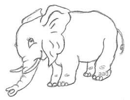 Cartoon Elephant Drawing