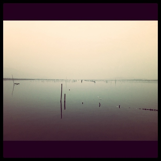 Zhangzhou China  city pictures gallery : Zhangzhou, China | I wandered lonely as a cloud | Pinterest