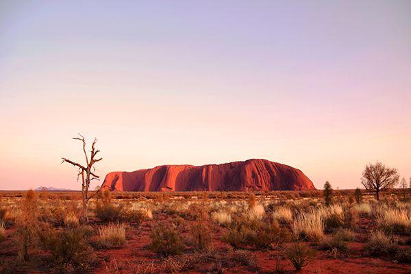 Falling in love with Uluru all over again