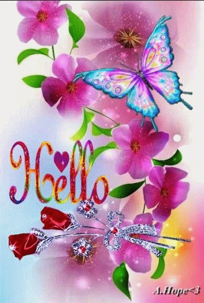 Hello ! Joli papillon !