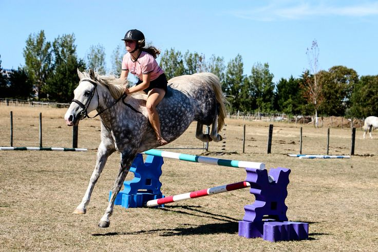 Roly jumping 90cm today