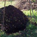Compostar y aplicar el compost en el huerto ecoagricultor.com