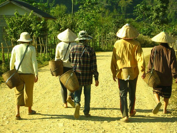 #Laos #vangVieng