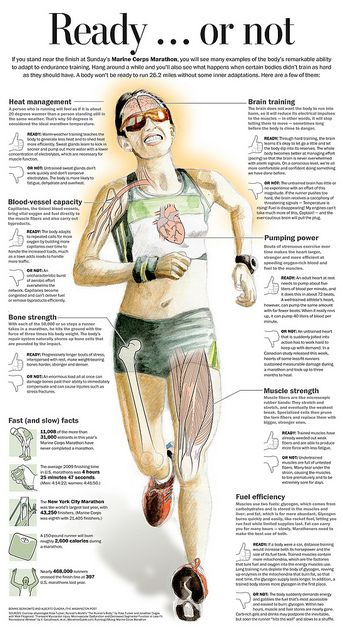 Important information, not just for marathons, but running and cycling in general.  The race does not begin at the starting line.