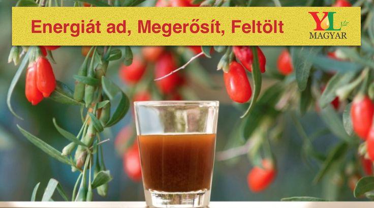 A Ningxia Red ® egyesíti a rendkívüli tulajdonságokkal rendelkező farkasbogyó és a narancs, yuzu, citrom és mandarin illóolajok jótékony hatását. Ehhez társul még az áfonya , arónia, cseresznye, gránátalma és szilvalé koncentrátum. Mindezek mellett tartalmaz szőlőmag kivonatot is, mely polifenolokban gazdag. A Ningxia Red így egy igazi energiabomba sok vitaminnal, ásvánnyal és egyéb értékes összetevőkkel, mint például a zeaxanthin. Erősíti a testet, és támogatja az általános egészséget…