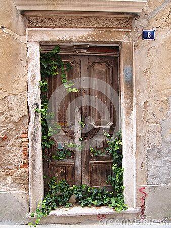 An old door with creeping ivy at Zadar, Croatia