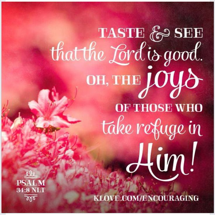 3277 best Bible Verses images on Pinterest | Bible quotes, Bible ...