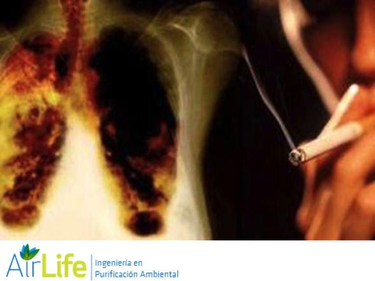 #airlife #aire #previsión #virus #hongos #bacterias #esporas #purificación  purificación de aire Airlife te dice. ¿qué tan malo es el monóxido de carbono para los humanos? En altas concentraciones el monóxido de carbono puede ser fatal. La intoxicación por este contaminante es uno de los tipos más comunes de envenenamiento, puede inhabilitar el transporte de oxígeno hacia las células y provocar mareos, dolor de cabeza, nauseas, estados de inconsciencia e inclusive la muerte…