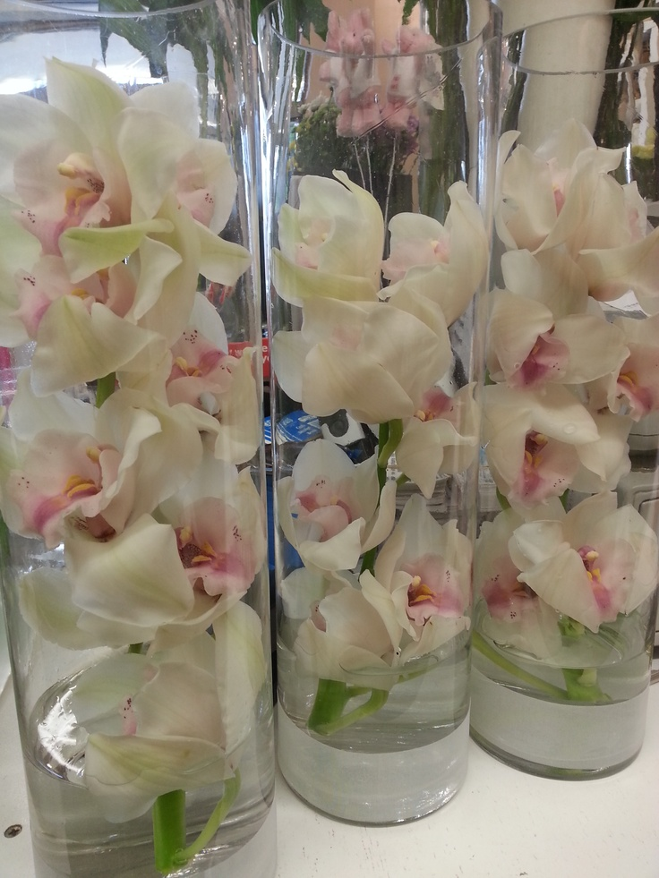 Simple Orchid Centerpiece : Cymbidium orchids in a tall vase flowering blooms