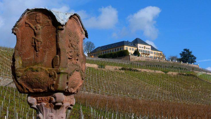 Schloss Johannisberg im Rheingau bei Geisenheim