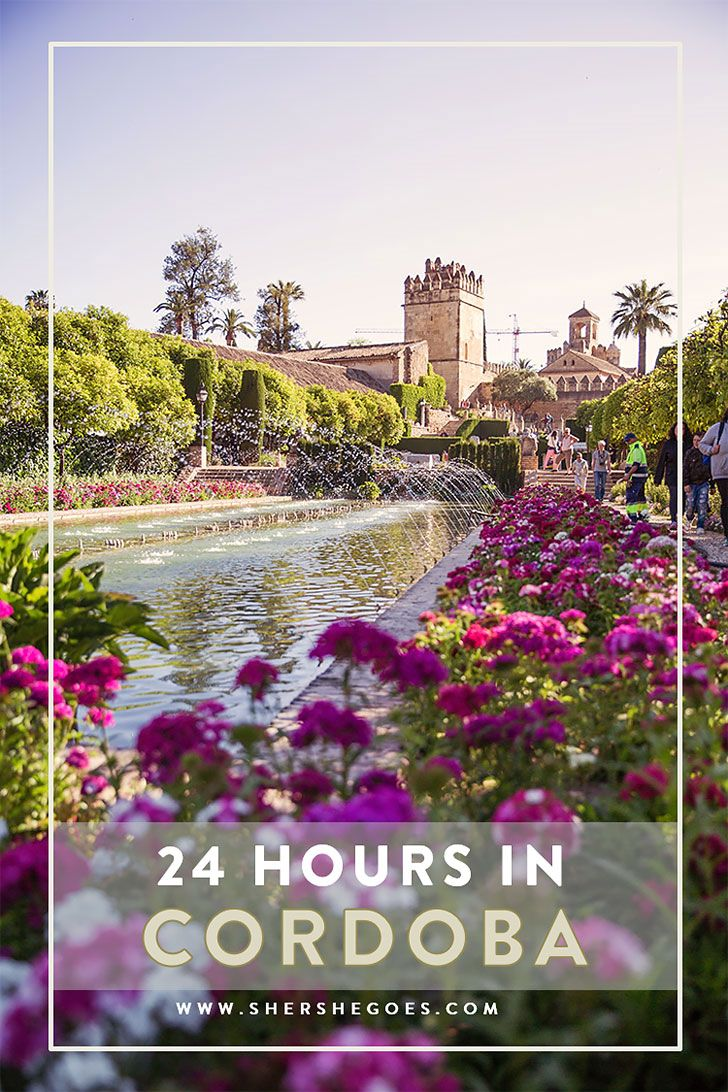 An itinerary for how to spend the perfect 24 hours in Cordoba - covering sights, food and tapas bars. Click through to read!