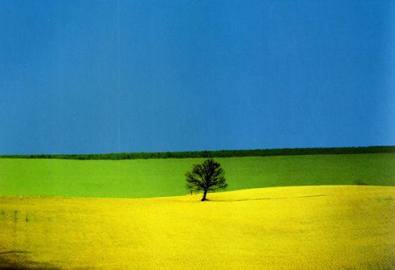 """""""Non esiste quello che vedete, esiste quello che fotografate"""" - Franco Fontana"""