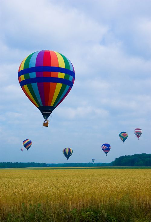hot air balloon pictures | Magnificent Photos of Multicolored Hot Air Balloons | Naldz Graphics