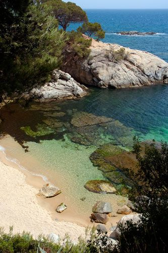 Cala del Pi Costa Brava Cataluña Spain