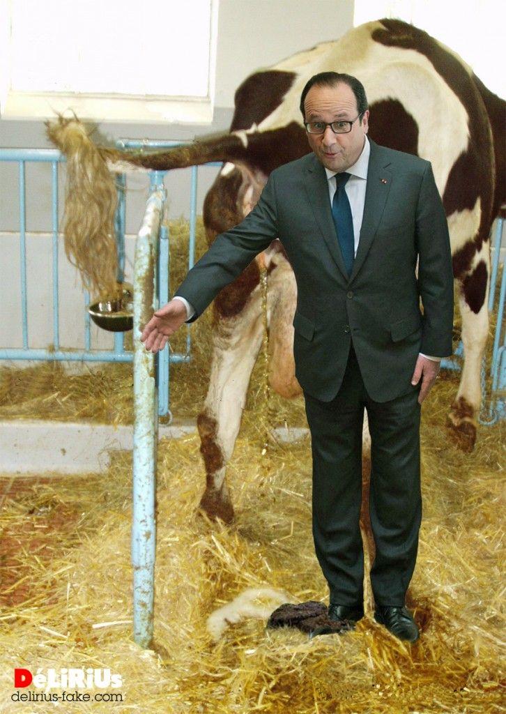 La m saventure de fran ois hollande au salon de l for Salon agriculture bruxelles
