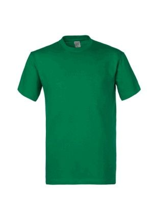Maglia T-Shirts Cotone 150 g Manica Corta 10 Pezzi Verde