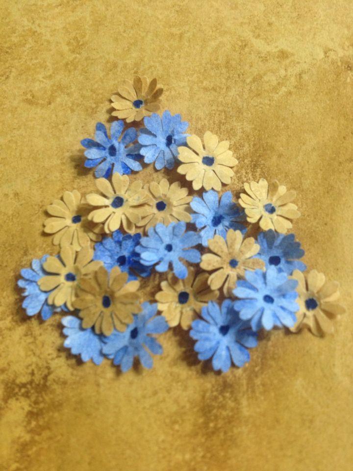 Kaat'ı Çiçek /Hilal Aytak