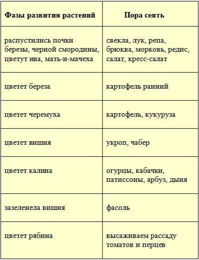 fenologicheskiy kalendar 1