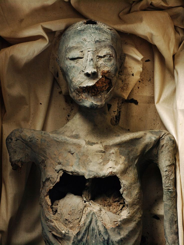 Picture of the younger lady mummy