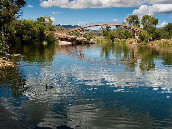 Bridge at patagonia lake state park this is one of my for Fishing spots in arizona