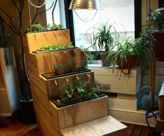 Planting Steps is a fully-functional household hydroponic farm composed of 4 modular shelves that create a viable ebb-and-flow hydroponic system for your living room
