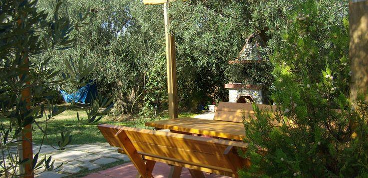 Green #Paradise   Dionysiou #beach #Halkidiki #Greece