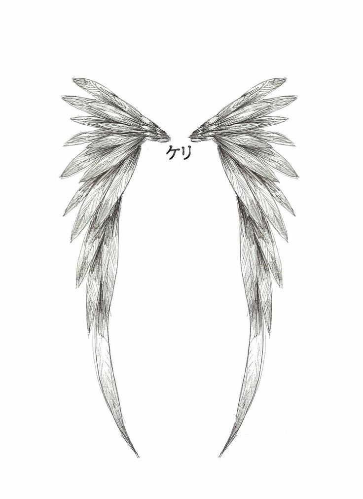Google Image Result for http://www.itattooz.com/itattooz/Angels/Angel%2520Wings/itattooz-angel-wings-tattoo-small-pics.jpg