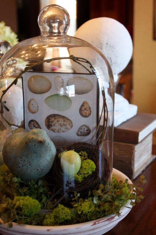 Wooden base sets off this cloche with birds. So many of my favorite things in one place~moss, eggs, birds, clear glass....