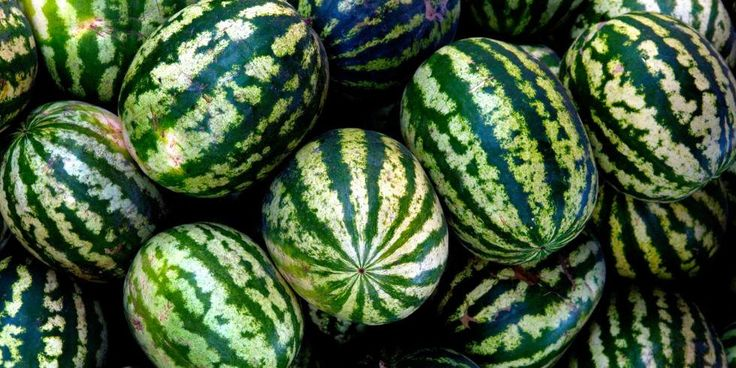 Watermelon You Should Never Ever Eat
