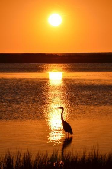 Sunrise at Barachois Beach by dottipaparazzi