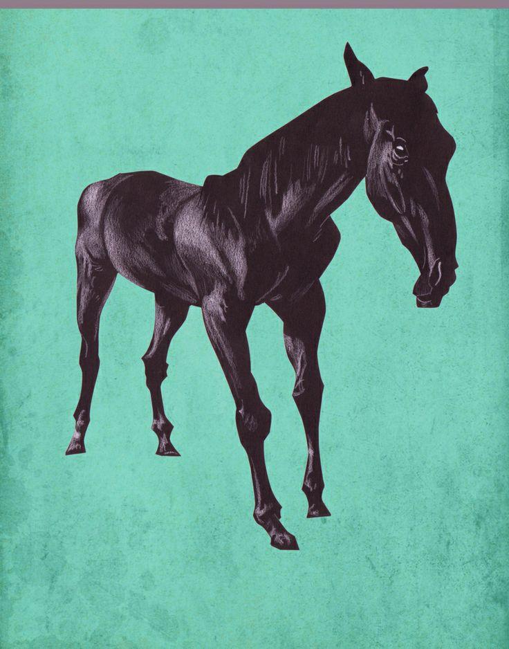 Trond Ivar Hansen - Horse
