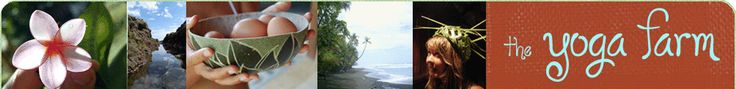Yoga retreat in Costa Rica,  Also volunteering opportunities-longer than a month.  Only open in July.