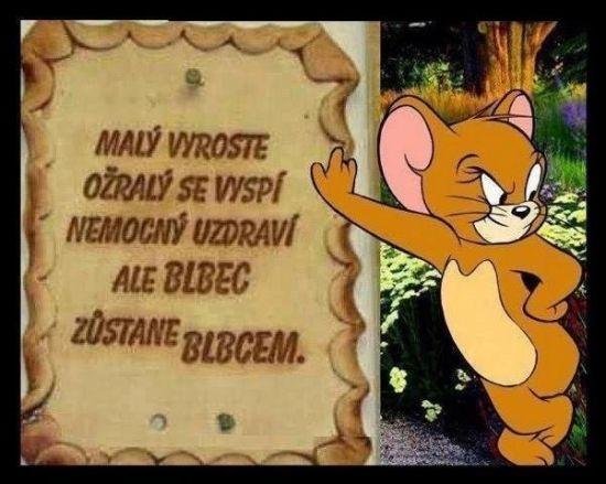 Malý vyroste, ožralý se vyspí.. | torpeda.cz - vtipné obrázky, vtipy a videa