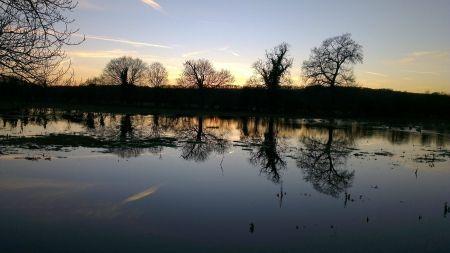 ポート草地、オックスフォード、イギリス 湖 自然 高解像度で壁紙